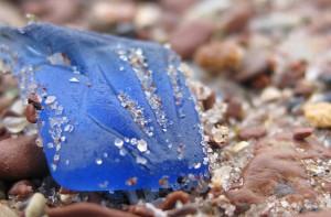 Kobaltblaues Meerglas findet sich relativ häufig.