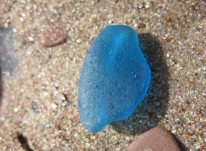 Kornblumenblau - wunderschön und sehr selten.