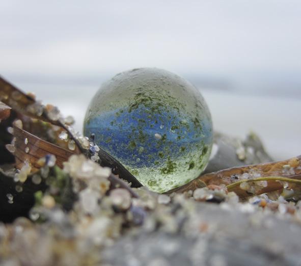 Murmel von der Ostsee